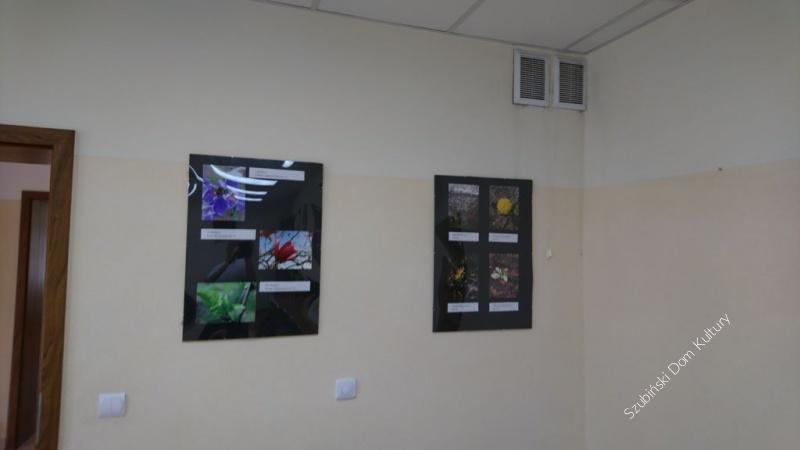 Wystawa fotograficzna już w świetlicy w Wąsoszu